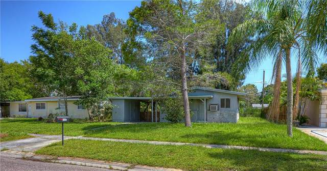 4406 W Trilby Avenue, Tampa, FL 33616 (MLS #T3257053) :: Cartwright Realty