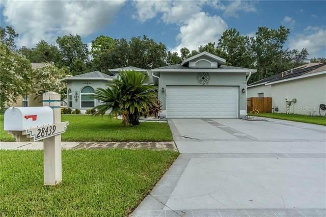 28439 Openfield Loop, Wesley Chapel, FL 33543 (MLS #T3257066) :: Premier Home Experts