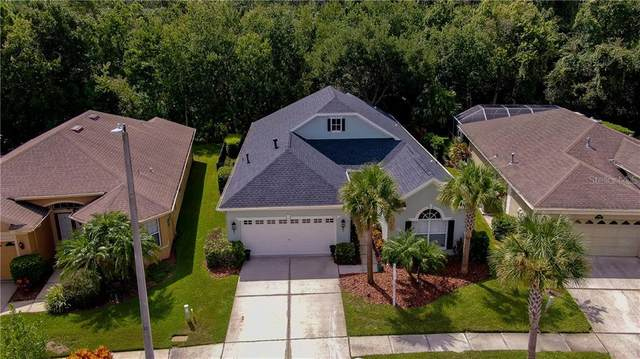 9614 Gretna Green Drive, Tampa, FL 33626 (MLS #T3257070) :: Griffin Group