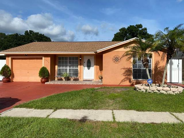 8815 Leeward Drive, Tampa, FL 33634 (MLS #T3257098) :: Baird Realty Group