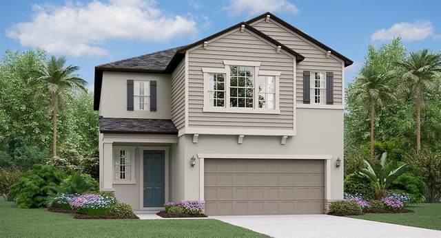 4015 Cadence Loop, Land O Lakes, FL 34638 (MLS #T3257108) :: GO Realty