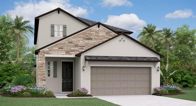 4007 Cadence Loop, Land O Lakes, FL 34638 (MLS #T3257110) :: GO Realty