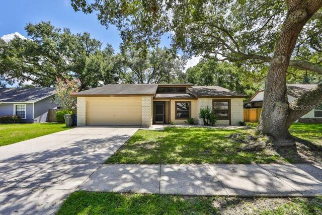 1509 Diehl Drive, Valrico, FL 33594 (MLS #T3257155) :: Griffin Group