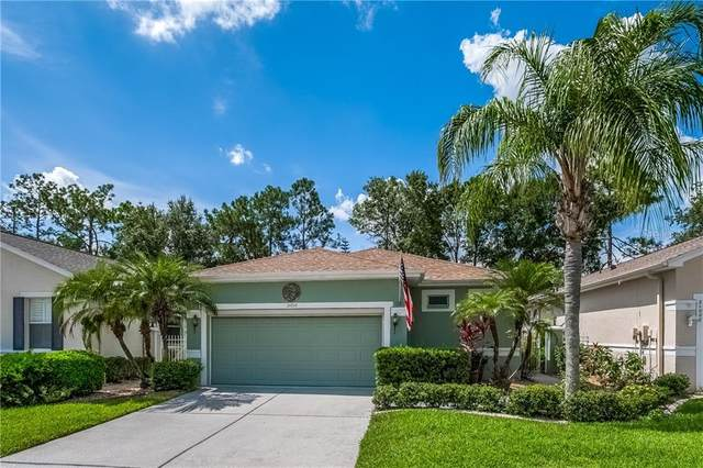 21010 Tangor Road, Land O Lakes, FL 34637 (MLS #T3257186) :: Premier Home Experts