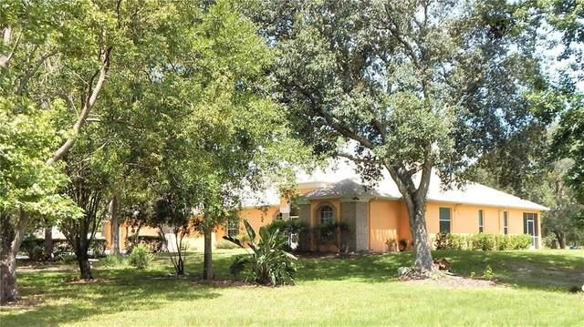 17425 Palamino Lake Drive, Dade City, FL 33523 (MLS #T3257204) :: Cartwright Realty