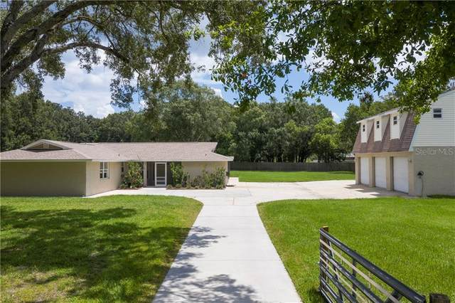 2404 Brookside Drive, Lutz, FL 33558 (MLS #T3257205) :: Baird Realty Group