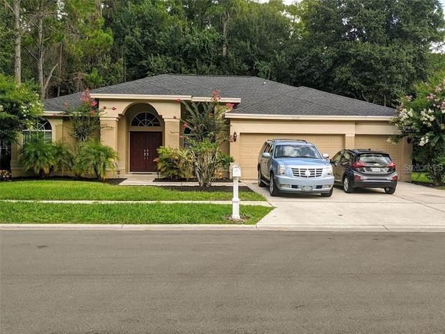 2528 Appaloosa Trail, Palm Harbor, FL 34685 (MLS #T3257226) :: Griffin Group