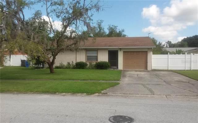 5131 Linkwood Avenue, Tampa, FL 33625 (MLS #T3257233) :: GO Realty