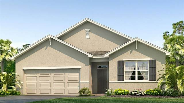 2861 Living Coral Drive, Odessa, FL 33556 (MLS #T3257243) :: Team Bohannon Keller Williams, Tampa Properties