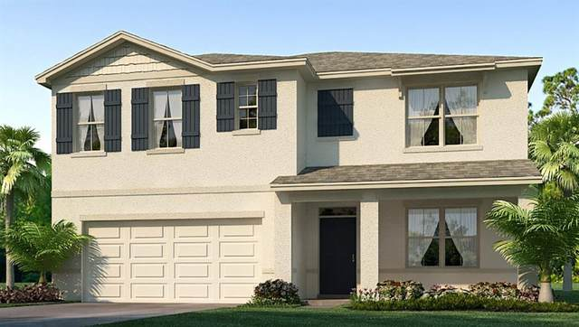 2899 Living Coral Drive, Odessa, FL 33556 (MLS #T3257250) :: Team Bohannon Keller Williams, Tampa Properties