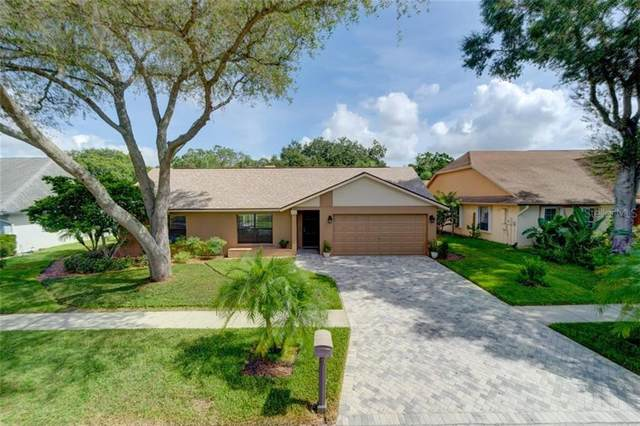 Address Not Published, Tampa, FL 33625 (MLS #T3257260) :: Cartwright Realty