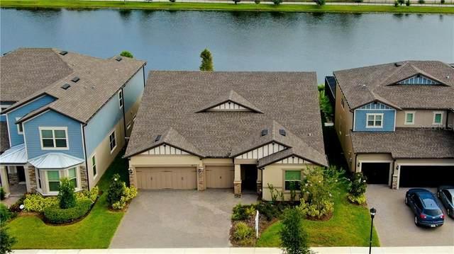 18717 Birchwood Groves Drive, Lutz, FL 33558 (MLS #T3257270) :: Team Bohannon Keller Williams, Tampa Properties