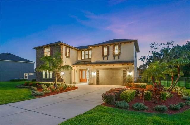 17814 Howsmoor Place, Lutz, FL 33559 (MLS #T3257293) :: GO Realty