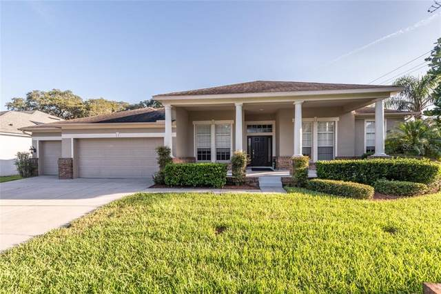 4216 Imperial Eagle Drive, Valrico, FL 33594 (MLS #T3257314) :: Griffin Group