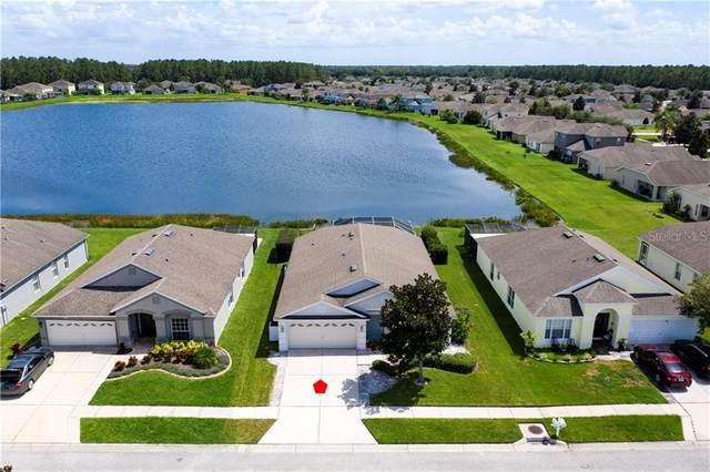 30418 Annadale Drive, Wesley Chapel, FL 33545 (MLS #T3257348) :: Team Bohannon Keller Williams, Tampa Properties