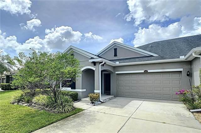4439 Ashton Meadows Way, Wesley Chapel, FL 33543 (MLS #T3257390) :: Griffin Group