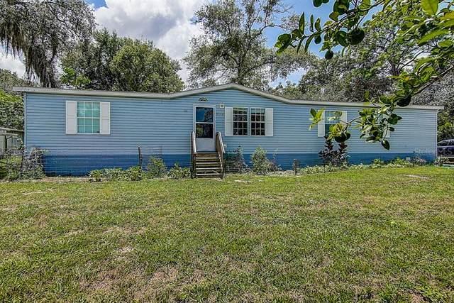 9344 Ogalala Street, New Port Richey, FL 34654 (MLS #T3257416) :: The Duncan Duo Team