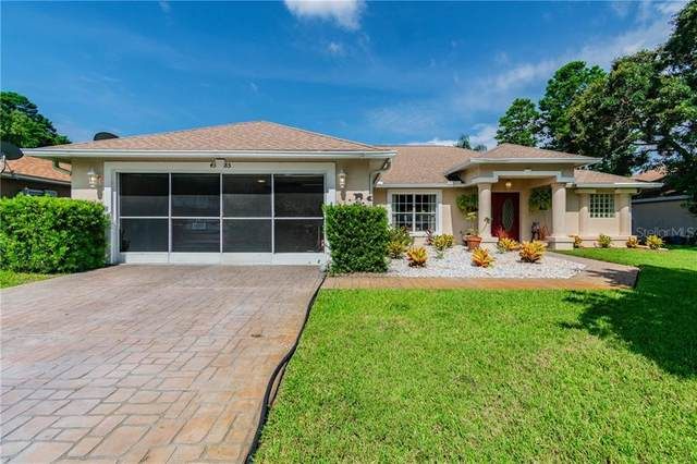 4385 Berkeley Heights Avenue, Spring Hill, FL 34606 (MLS #T3257448) :: The Duncan Duo Team