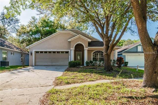 3405 Gray Whetstone Street, Brandon, FL 33511 (MLS #T3257467) :: Dalton Wade Real Estate Group