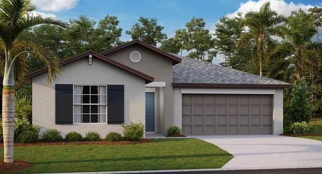 743 Calico Scallops Street, Ruskin, FL 33570 (MLS #T3257509) :: Cartwright Realty