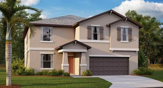 13037 Majestic Garden Lane, Riverview, FL 33579 (MLS #T3257544) :: The Duncan Duo Team