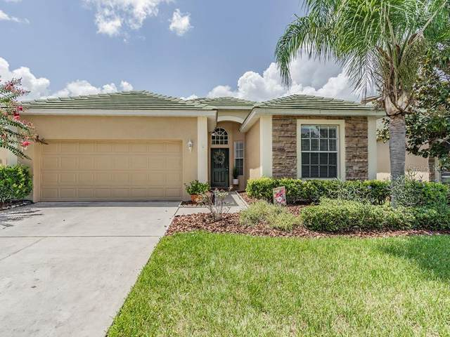 13211 Tradition Drive, Dade City, FL 33525 (MLS #T3257550) :: The Light Team