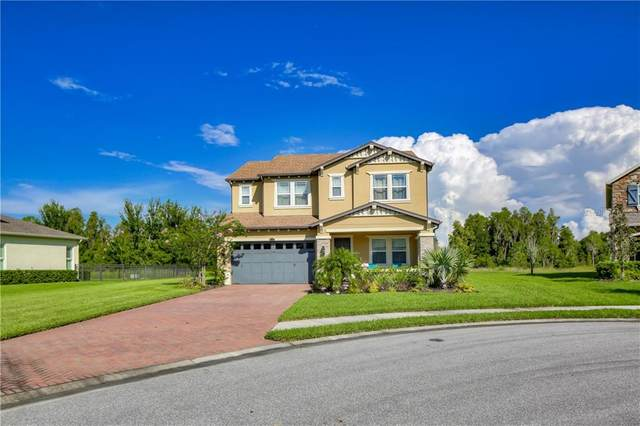 4183 Canino Court, Wesley Chapel, FL 33543 (MLS #T3257551) :: Team Bohannon Keller Williams, Tampa Properties