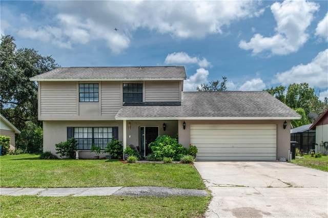 5410 Brushy Creek Drive, Tampa, FL 33625 (MLS #T3257557) :: Cartwright Realty