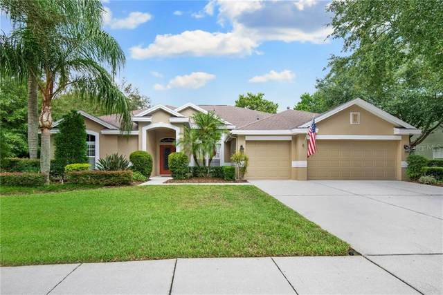 18002 Wynthorne Drive, Tampa, FL 33647 (MLS #T3257570) :: Team Bohannon Keller Williams, Tampa Properties