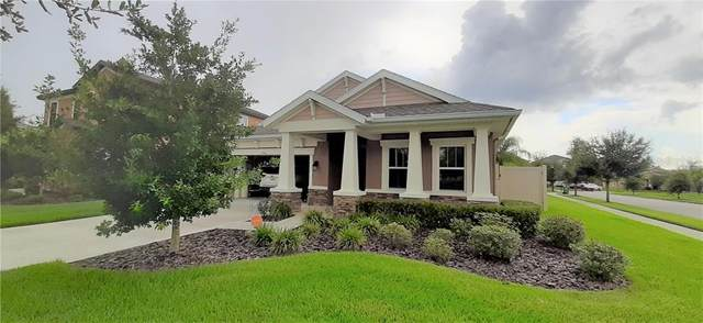 1781 Tallulah Terrace, Wesley Chapel, FL 33543 (MLS #T3257571) :: Griffin Group