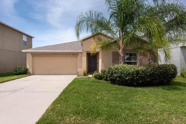 10641 Standing Stone Drive, Wimauma, FL 33598 (MLS #T3257578) :: Cartwright Realty