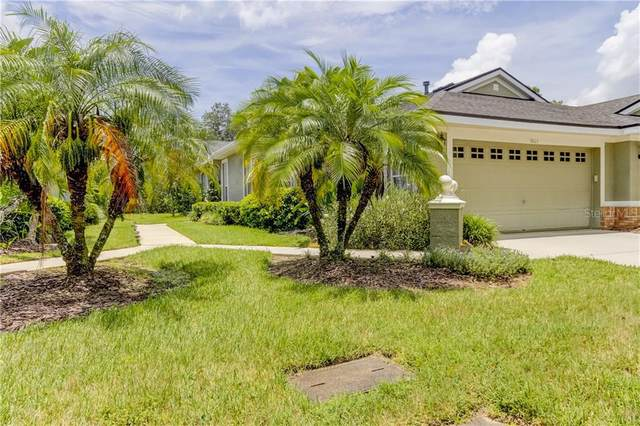 9823 Gingerwood Drive, Tampa, FL 33626 (MLS #T3257601) :: Cartwright Realty