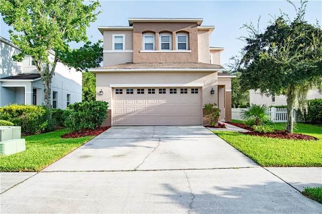 27004 Stillbrook Drive, Wesley Chapel, FL 33544 (MLS #T3257607) :: Team Bohannon Keller Williams, Tampa Properties