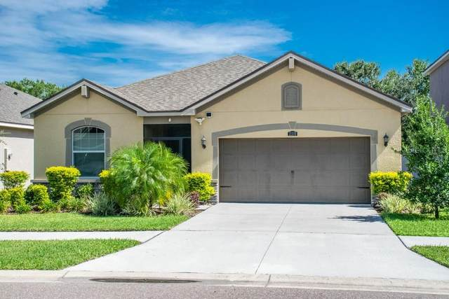 12370 Streambed Drive, Riverview, FL 33579 (MLS #T3257634) :: The Duncan Duo Team