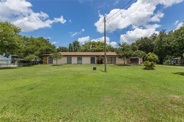 26419 Foamflower Boulevard, Wesley Chapel, FL 33544 (MLS #T3257649) :: Team Bohannon Keller Williams, Tampa Properties