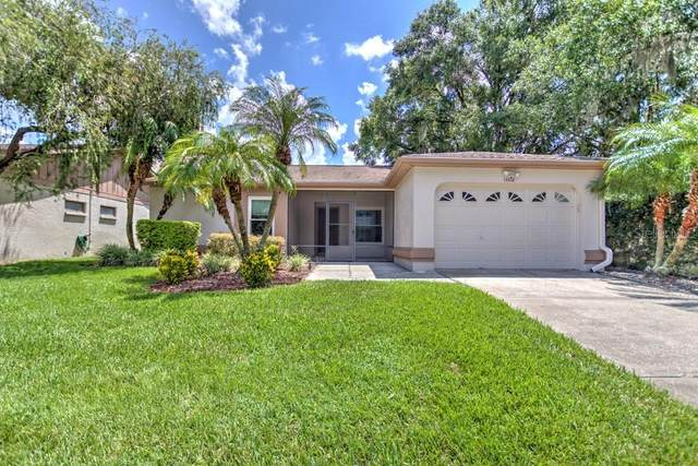 13112 Faulkner Place, Riverview, FL 33579 (MLS #T3257673) :: The Robertson Real Estate Group