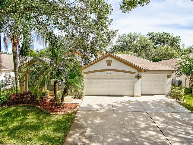 2506 Allwood Avenue, Valrico, FL 33596 (MLS #T3257692) :: GO Realty