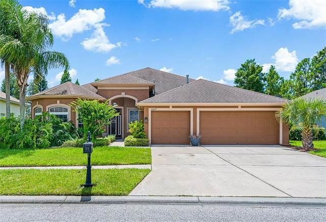 10627 Gretna Green Drive, Tampa, FL 33626 (MLS #T3257734) :: Cartwright Realty