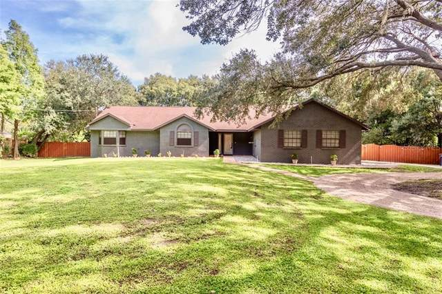 7016 Muck Pond Road, Seffner, FL 33584 (MLS #T3257738) :: Cartwright Realty