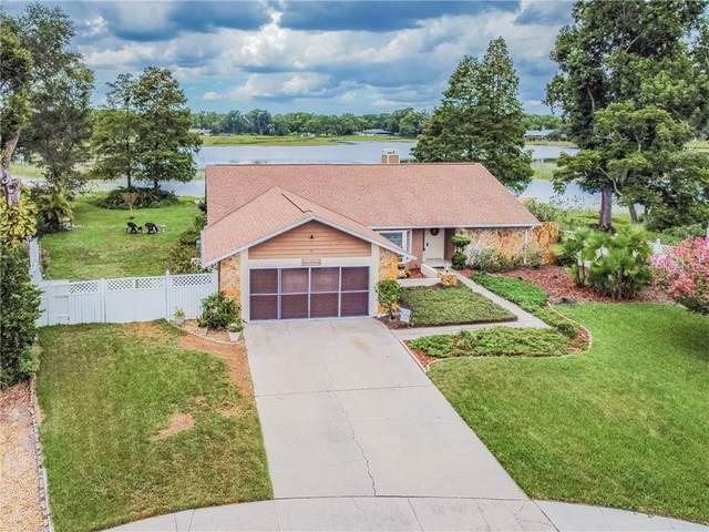 23741 Lake Walk Court, Lutz, FL 33559 (MLS #T3257742) :: Gate Arty & the Group - Keller Williams Realty Smart