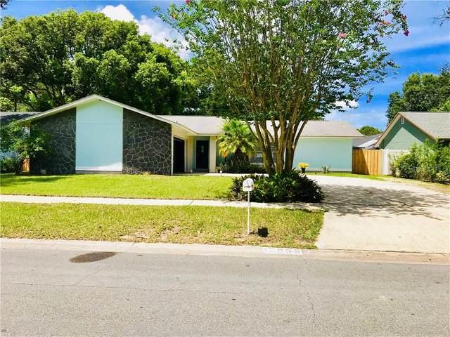 17839 Sunrise Drive, Lutz, FL 33549 (MLS #T3257747) :: Team Bohannon Keller Williams, Tampa Properties