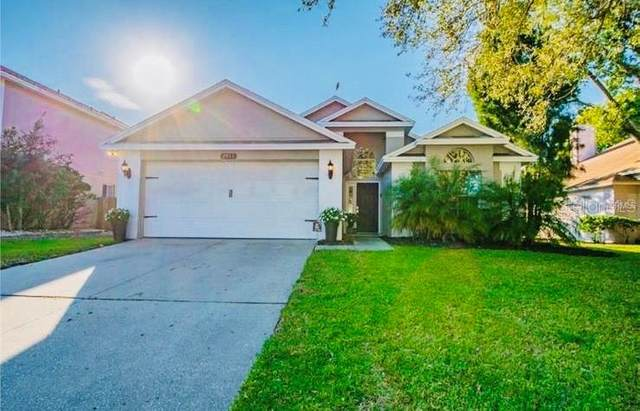 2911 Shannon Circle, Palm Harbor, FL 34684 (MLS #T3257772) :: The Duncan Duo Team