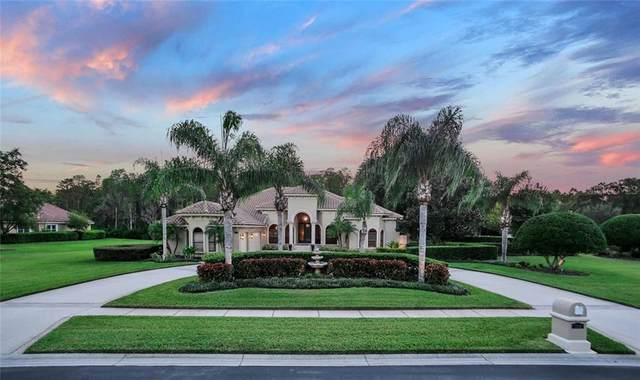 9924 Menander Wood Court, Odessa, FL 33556 (MLS #T3257783) :: Team Bohannon Keller Williams, Tampa Properties