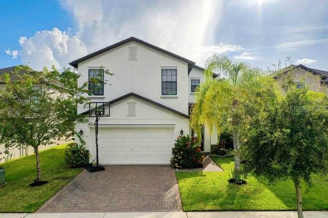 1763 Hadden Hall Place, Trinity, FL 34655 (MLS #T3257838) :: The Figueroa Team