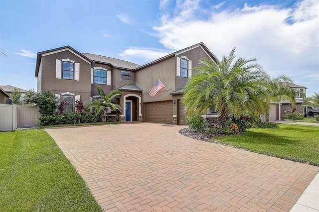 10005 Celtic Ash Drive, Ruskin, FL 33573 (MLS #T3257900) :: Keller Williams on the Water/Sarasota