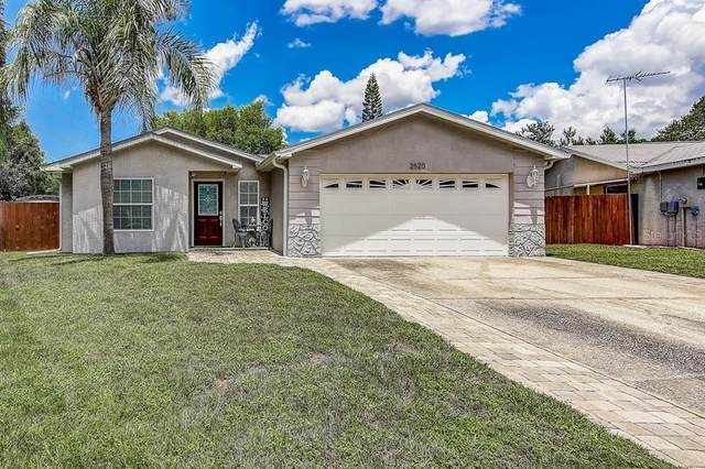 2520 Fawn Court, Clearwater, FL 33761 (MLS #T3257924) :: Ramos Professionals Group