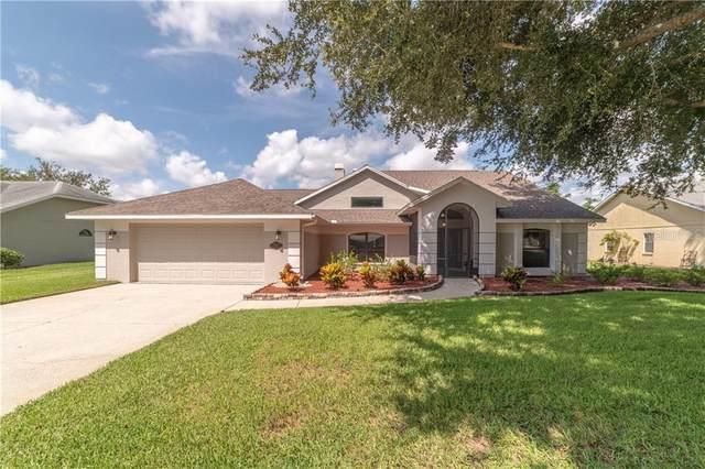6401 Huntington Drive, Zephyrhills, FL 33542 (MLS #T3257929) :: Team Borham at Keller Williams Realty