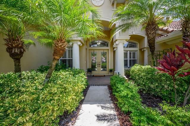 785 Winslow Park Boulevard, Tarpon Springs, FL 34688 (MLS #T3257954) :: Delta Realty Int