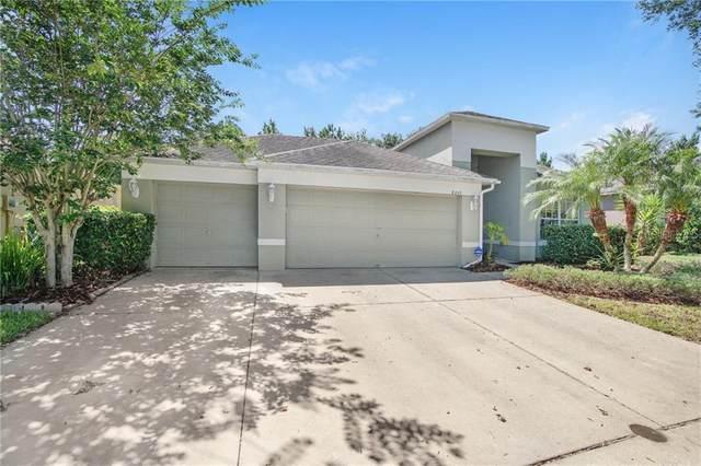 8207 Pinewood Run Court, Tampa, FL 33647 (MLS #T3257999) :: GO Realty