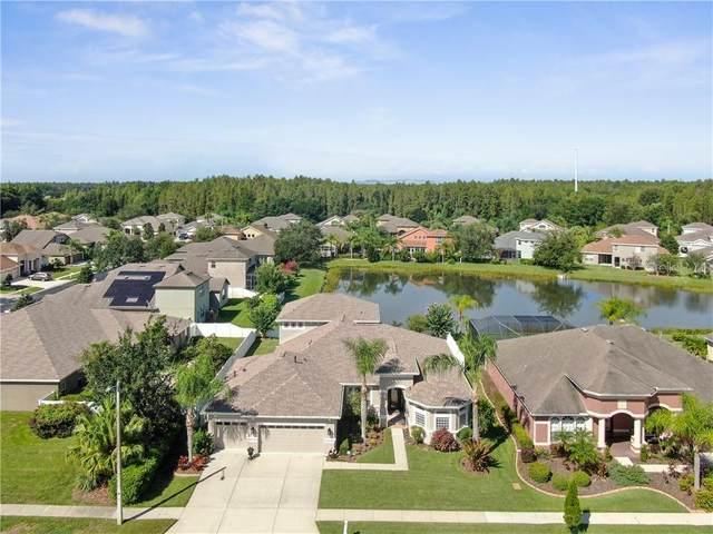 1559 Beaconsfield Drive, Wesley Chapel, FL 33543 (MLS #T3258004) :: Team Bohannon Keller Williams, Tampa Properties